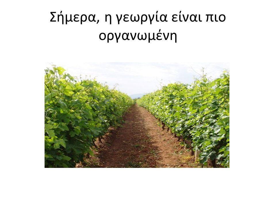 Σήμερα, η γεωργία είναι πιο οργανωμένη
