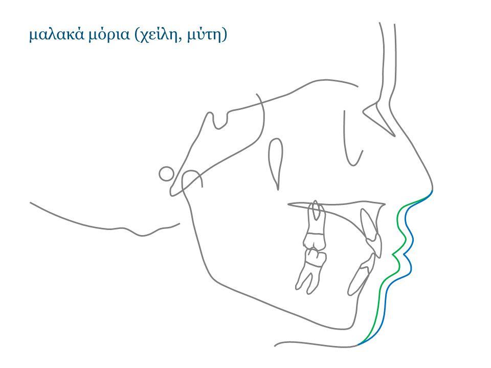 μαλακά μόρια (χείλη, μύτη)