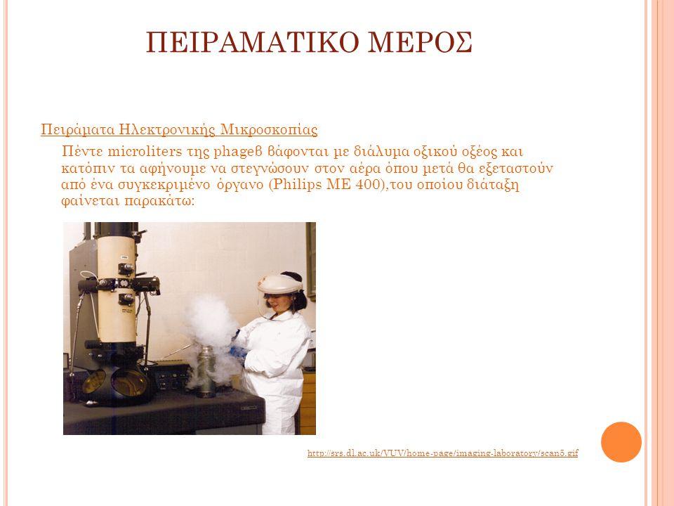 ΠΕΙΡΑΜΑΤΙΚΟ ΜΕΡΟΣ Πειράματα Ηλεκτρονικής Μικροσκοπίας Πέντε microliters της phageβ βάφονται με διάλυμα οξικού οξέος και κατόπιν τα αφήνουμε να στεγνώσουν στον αέρα όπου μετά θα εξεταστούν από ένα συγκεκριμένο όργανο (Philips ME 400),του οποίου διάταξη φαίνεται παρακάτω: http:// srs.dl.ac.uk/VUV/home-page/imaging-laboratory/scan5.gif