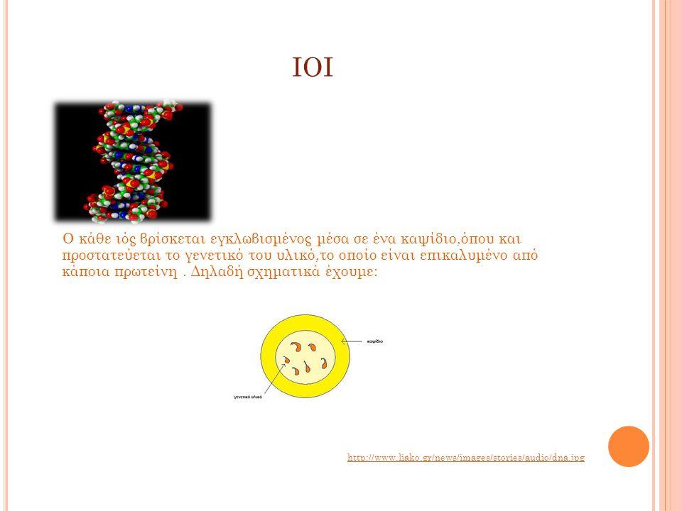 ΙΟΙ Ο κάθε ιός βρίσκεται εγκλωβισμένος μέσα σε ένα καψίδιο,όπου και προστατεύεται το γενετικό του υλικό,το οποίο είναι επικαλυμένο από κάποια πρωτείνη.