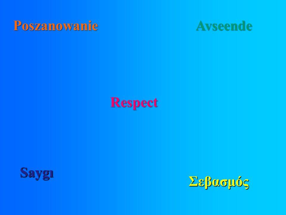 Σεβασμός Poszanowanie Avseende Respect Saygı