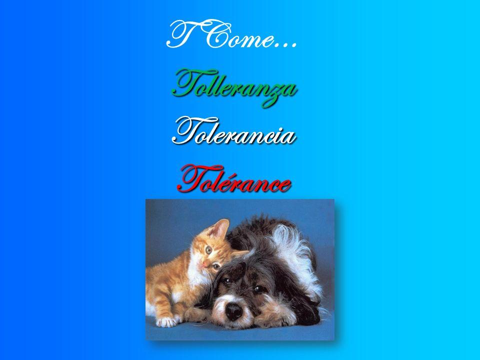T Come…TolleranzaToleranciaTolérance