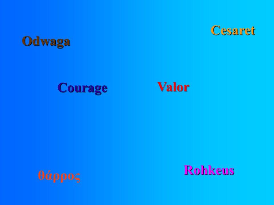 Courage Rohkeus Odwaga Cesaret θάρρος Valor