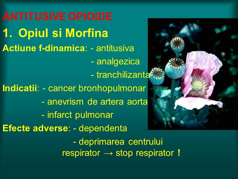 ANTITUSIVE OPIOIDE 1.Opiul si Morfina Actiune f-dinamica: - antitusiva - analgezica - tranchilizanta Indicatii: - cancer bronhopulmonar - anevrism de
