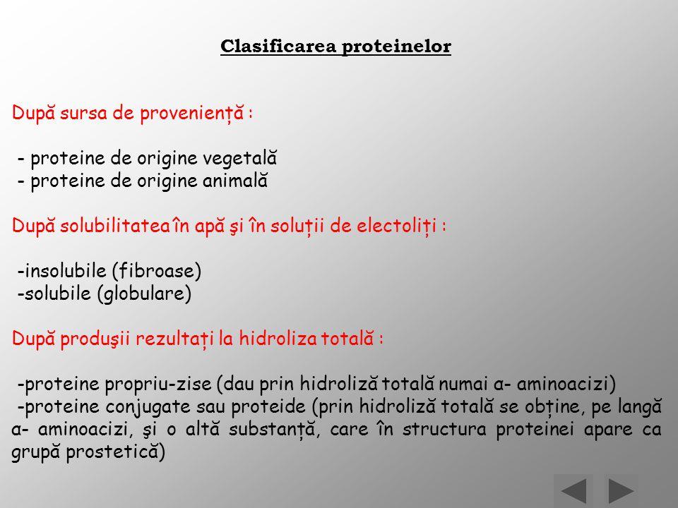 Clasificarea proteinelor După sursa de provenienţă : - proteine de origine vegetală - proteine de origine animală După solubilitatea în apă şi în solu