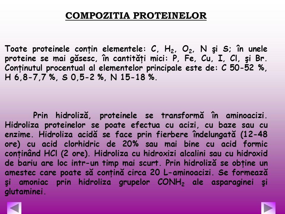 COMPOZITIA PROTEINELOR Toate proteinele conţin elementele: C, H 2, O 2, N şi S; în unele proteine se mai găsesc, în cantităţi mici: P, Fe, Cu, I, Cl,