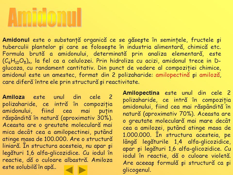 Amidonul este o substanţă organică ce se găseşte în seminţele, fructele şi tuberculii plantelor şi care se foloseşte în industria alimentară, chimică