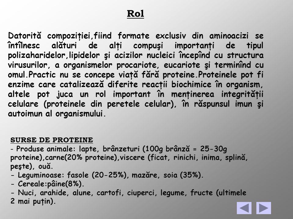 Rol Datorită compoziţiei,fiind formate exclusiv din aminoacizi se întîlnesc alături de alţi compuşi importanţi de tipul polizaharidelor,lipidelor şi a