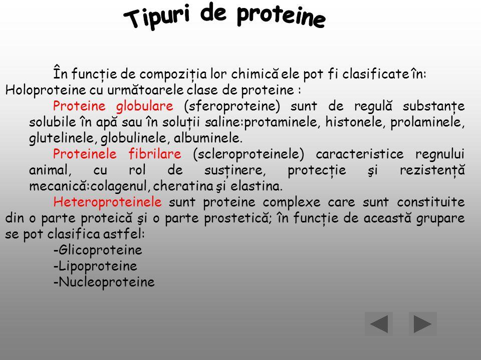 În funcţie de compoziţia lor chimică ele pot fi clasificate în: Holoproteine cu următoarele clase de proteine : Proteine globulare (sferoproteine) sun