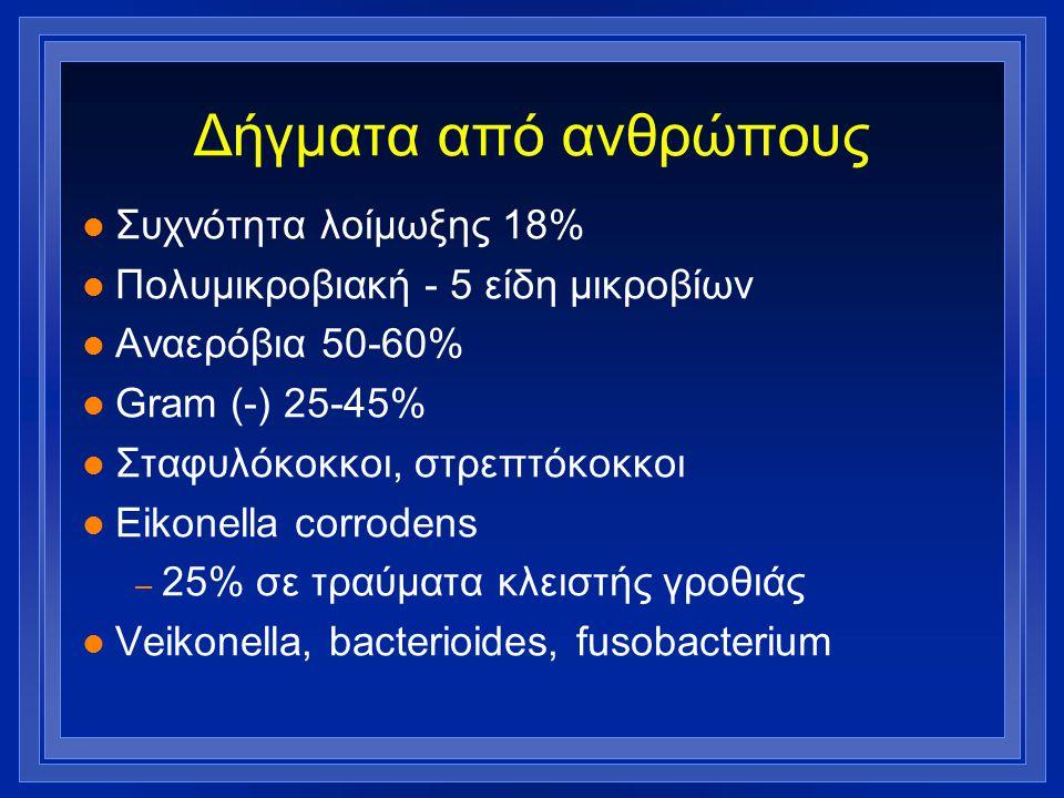 Δήγματα από ανθρώπους l Συχνότητα λοίμωξης 18% l Πολυμικροβιακή - 5 είδη μικροβίων l Αναερόβια 50-60% l Gram (-) 25-45% l Σταφυλόκοκκοι, στρεπτόκοκκοι