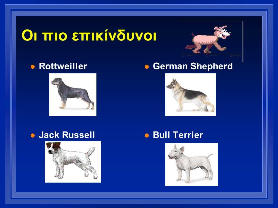 Οι πιο επικίνδυνοι l Rottweiller l Jack Russell l German Shepherd l Bull Terrier