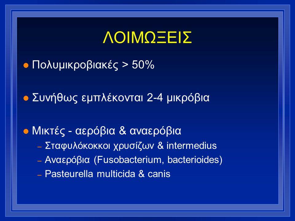 ΛΟΙΜΩΞΕΙΣ l Πολυμικροβιακές > 50% l Συνήθως εμπλέκονται 2-4 μικρόβια l Μικτές - αερόβια & αναερόβια – Σταφυλόκοκκοι χρυσίζων & intermedius – Αναερόβια