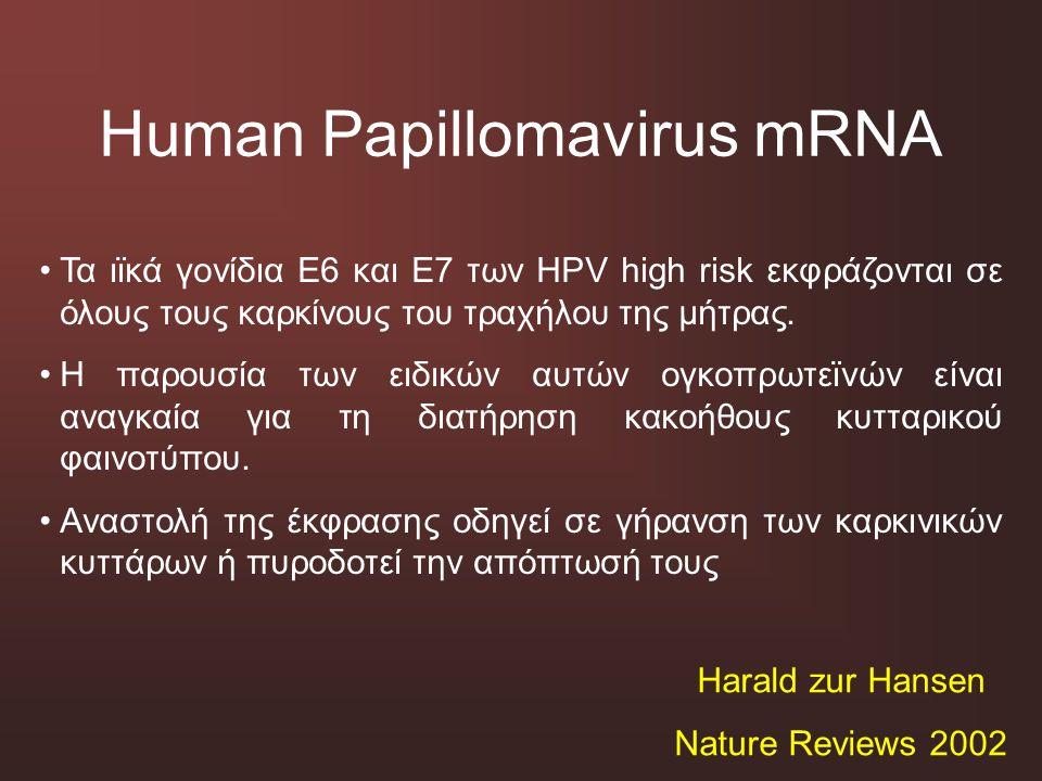 Human Papillomavirus mRNA Τα ιϊκά γονίδια Ε6 και Ε7 των HPV high risk εκφράζονται σε όλους τους καρκίνους του τραχήλου της μήτρας. Η παρουσία των ειδι