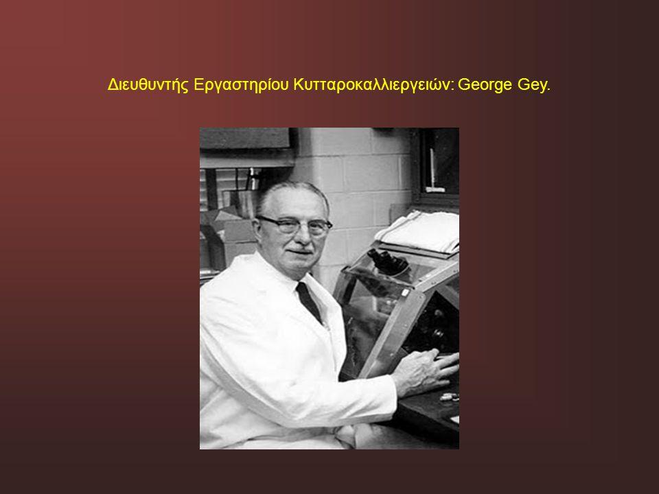 Διευθυντής Εργαστηρίου Κυτταροκαλλιεργειών: George Gey.