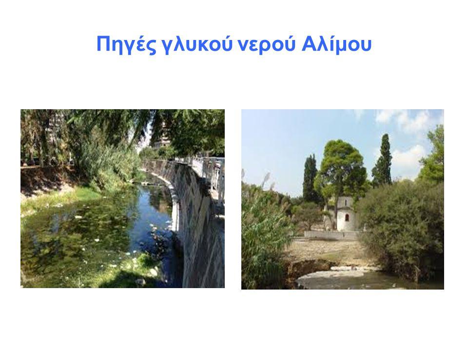 Ρέμα Πικροδάφνης Το ρέμα Πικροδάφνης ξεκινάει από τον ανατολικό Υμηττό και καταλήγει στους δήμους των νότιων προαστίων της Αθήνας όπως της Ηλιούπολης, Αγίου Δημητρίου, Παλαιού Φαλήρου και Αλίμου.