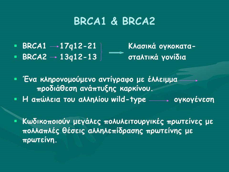 Γονίδια ευαισθησίας του καρκίνου του μαστού ΓονίδιοΣυντόμευσηΕντόπισηΛειτουργία της πρωτείνης Σχετιζόμενα σύνδρομα προδιαθεσικά καρκίνου Αναλογία κινδύνου καρκίνου μαστού BRCA1 (αυτοσωμικό επικρατόν) Breast Cancer gene 1 17q12-21Επιδιόρθωση του DNA, μετενεργοποίηση Κληρονομικός καρκίνος μαστού / ωοθήκης Αμφοτερόπλευρος/πολυεστι ακός όγκος μαστού Κίνδυνος καρκίνου προστάτη, παχέος εντέρου, ήπατος και οστών 60-85% κατά τη διάρκεια της ζωής 15-40% κίνδυνος για Ca ωοθήκης BRCA2 (αυτοσωμικό επικρατόν) Breast Cancer gene 2 13q12-13Επιδιόρθωση του DNA, μετενεργοποίηση Κληρονομικός καρκίνος μαστού / ωοθήκης D1 Αναιμία Fanconi (προκαλούμενη από μετάλλαξη και των 2 αλληλίων) Καρκίνος ανδρικού μαστού, κίνδυνος Ca παγκρέατος, χοληδόχου, φάρυγγα, στομάχου, προστάτη και μελανώματος 37-84% (μέχρι τα 70) 60-85% κατά τη διάρκεια της ζωής 15-40% κίνδυνος για Ca ωοθήκης TP53 (αυτοσωμικό επικρατόν) Tumor Protein 53 17q13.1Ρύθμιση κυτταρι- κού κύκλου, από- πτωση, επιδιόρθωση DNA, απόπτωση Σύνδρομο Li-Fraumeni Κίνδυνος για Ca μαστού, σάρκωμα μαλακών μορίων, όγκους ΚΝΣ, Ca φλοιού επι- νεφριδίων, λευχαιμία & Ca προστάτη 50-80% (μέχρι τα 50) 90% σε επιζώντες με Li-Fraumeni