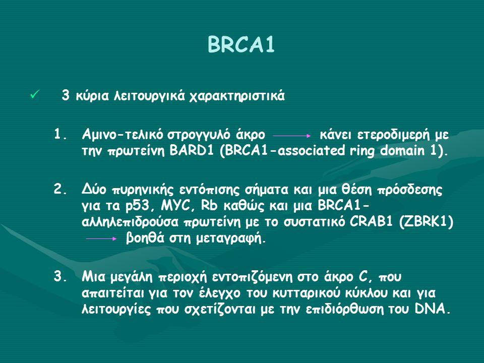 BRCA1   Παραμένει ασαφές ποια από τις πολλές λειτουργίες του συνεισφέρει στον ειδικό του ρόλο σαν κύριο γονίδιο ευαισθησίας για τον καρκίνο του μαστού και της ωοθήκης.