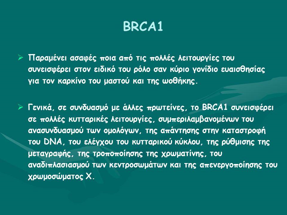 Γονίδια ευαισθησίας του καρκίνου του μαστού ΓονίδιοΣυντόμευσηΕντόπισηΛειτουργία της πρωτείνης Σχετιζόμενα σύνδρομα προδιαθεσικά καρκίνου Αναλογία κινδύνου καρκίνου μαστού STK11/LKB1 (αυτοσωμικό επικρατόν) Serine/Threo nine Protein Kinase 11 19p13.3Κινάση σερίνης/θρεονίνη ς Σύνδρομο Peutz-Jeghers Καρκίνωμα μαστού, ωοθήκης, τραχήλου μήτρας, όρχεος και παχέος εντέρου, αμαρτωματώδεις πολύποδες 29-54% κατά τη διάρκεια της ζωής ATM (αυτοσωμικό recessive mode κληρονομικό τητας) Ataxia- Telangiectasia Mutated 11q22.3Επιδιόρθωση του DNA Αταξία-τηλεαγγειεκτασία Καρκίνος μαστού και ωοθήκης, λευχαιμία, λεμφώματα, ανοσοανεπάρκεια, ασαφείς πληροφορίες για τον καρκίνο στομάχου, παγκρέατος και ουροδόχου κύστης Διπλάσιος (υψηλότερος για γυναίκες >50) 15% των φορέων θα αναπτύξουν καρκίνο μαστού BRIP1BRCA1 Interacting Protein C- terminus helicase1 17q22-q24Επιδιόρθωση του DNA Σημείο ελέγχου FA-J Αναιμία Fanconi (προκαλείται από μετάλλαξη και στα 2 αλλήλια) Καρκίνος μαστού Διπλάσιος (υψηλότερος σε γυναίκες < 50)