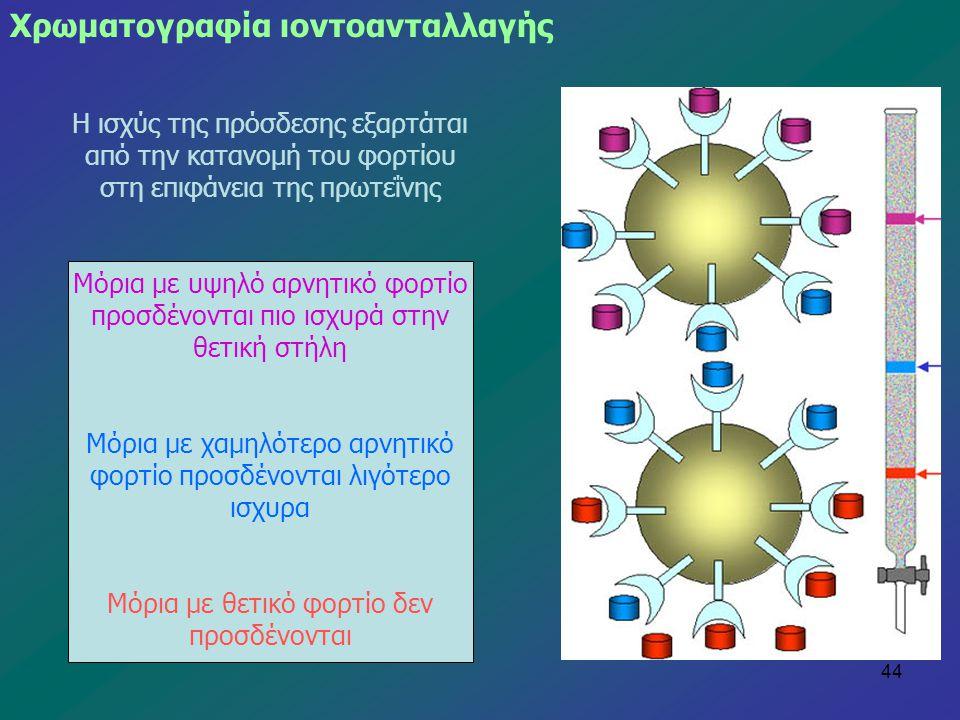 44 Η ισχύς της πρόσδεσης εξαρτάται από την κατανομή του φορτίου στη επιφάνεια της πρωτεΐνης Μόρια με υψηλό αρνητικό φορτίο προσδένονται πιο ισχυρά στη