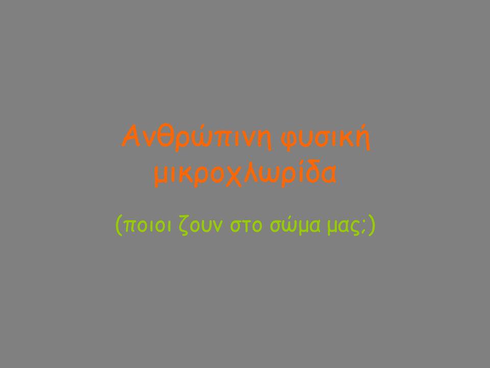 Στοματική κοιλότητα Ύπαρξη αναερόβιων περιοχών στη στοματική κοιλότητα π.χ.