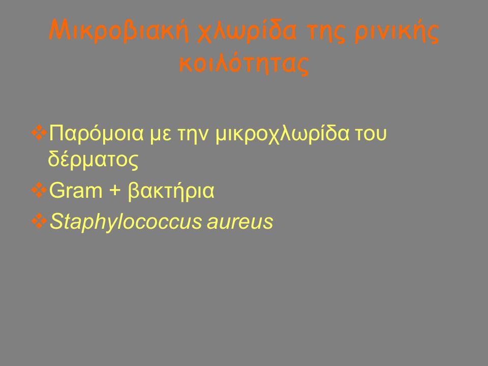 Mικροβιακή χλωρίδα της ρινικής κοιλότητας  Παρόμοια με την μικροχλωρίδα του δέρματος  Gram + βακτήρια  Staphylococcus aureus