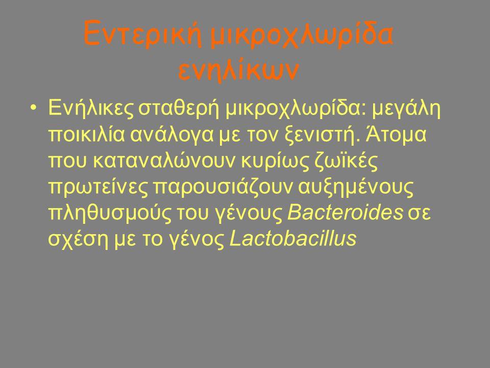 Εντερική μικροχλωρίδα ενηλίκων Ενήλικες σταθερή μικροχλωρίδα: μεγάλη ποικιλία ανάλογα με τον ξενιστή. Άτομα που καταναλώνουν κυρίως ζωϊκές πρωτείνες π