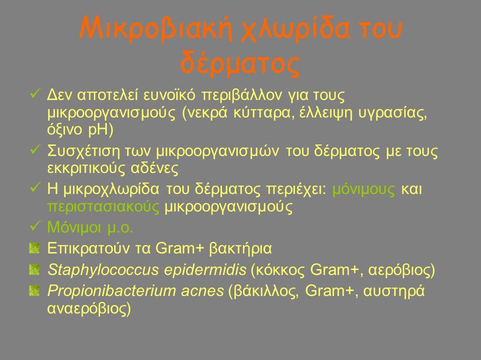 Αναπνευστική οδός  Τραχεία, φάρυγγας: α- και β- στρεπτόκοκκοι, σταφυλόκοκκοι  Υπόλοιπα όργανα: στείρα