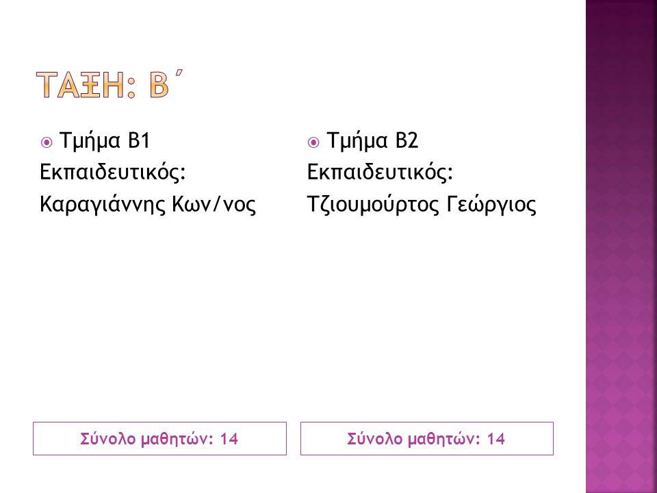 Σύνολο μαθητών: 14  Τμήμα Β1 Εκπαιδευτικός: Καραγιάννης Κων/νος  Τμήμα Β2 Εκπαιδευτικός: Τζιουμούρτος Γεώργιος