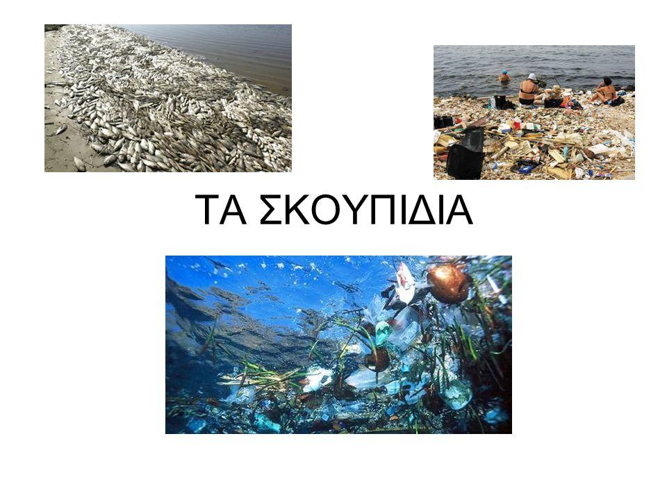 Μεσόγειος, θάλασσα από πλαστικό Πλαστικά σκουπίδια κυριεύουν τη θάλασσά μας.