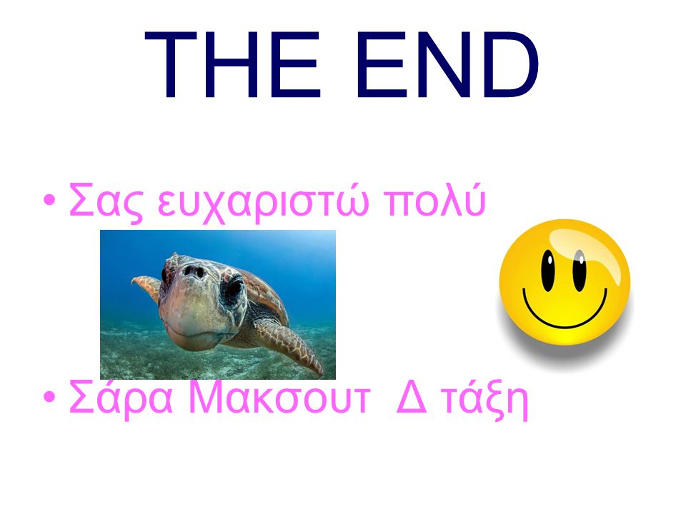 THE END Σας ευχαριστώ πολύ Σάρα Μακσουτ Δ τάξη