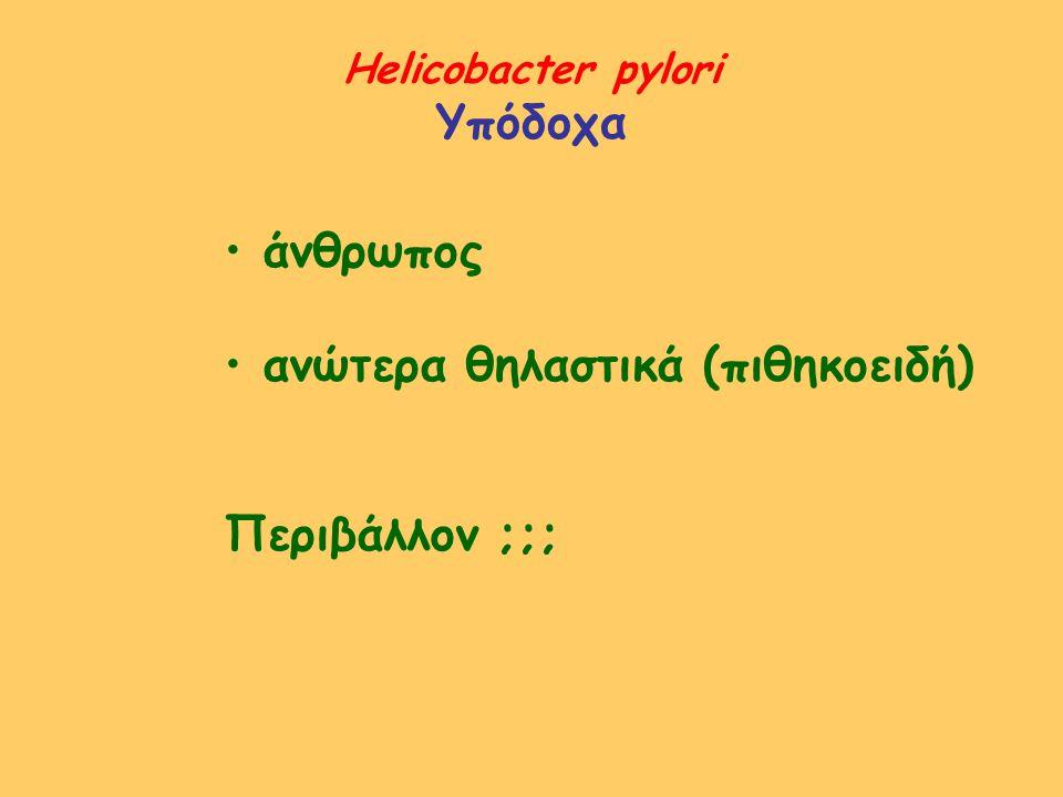 Helicobacter pylori Υπόδοχα άνθρωπος ανώτερα θηλαστικά (πιθηκοειδή) Περιβάλλον ;;;