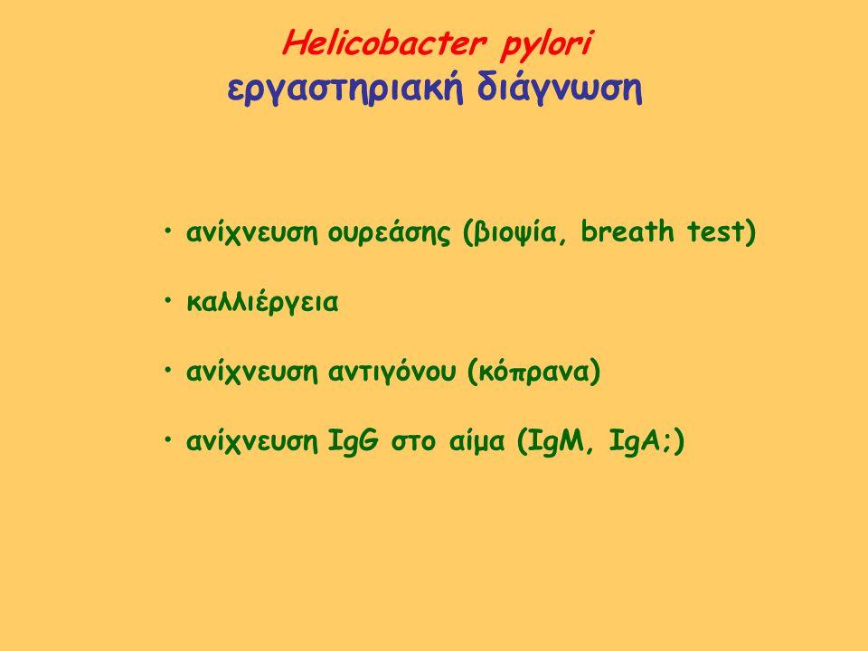 Helicobacter pylori εργαστηριακή διάγνωση ανίχνευση ουρεάσης (βιοψία, breath test) καλλιέργεια ανίχνευση αντιγόνου (κόπρανα) ανίχνευση IgG στο αίμα (I