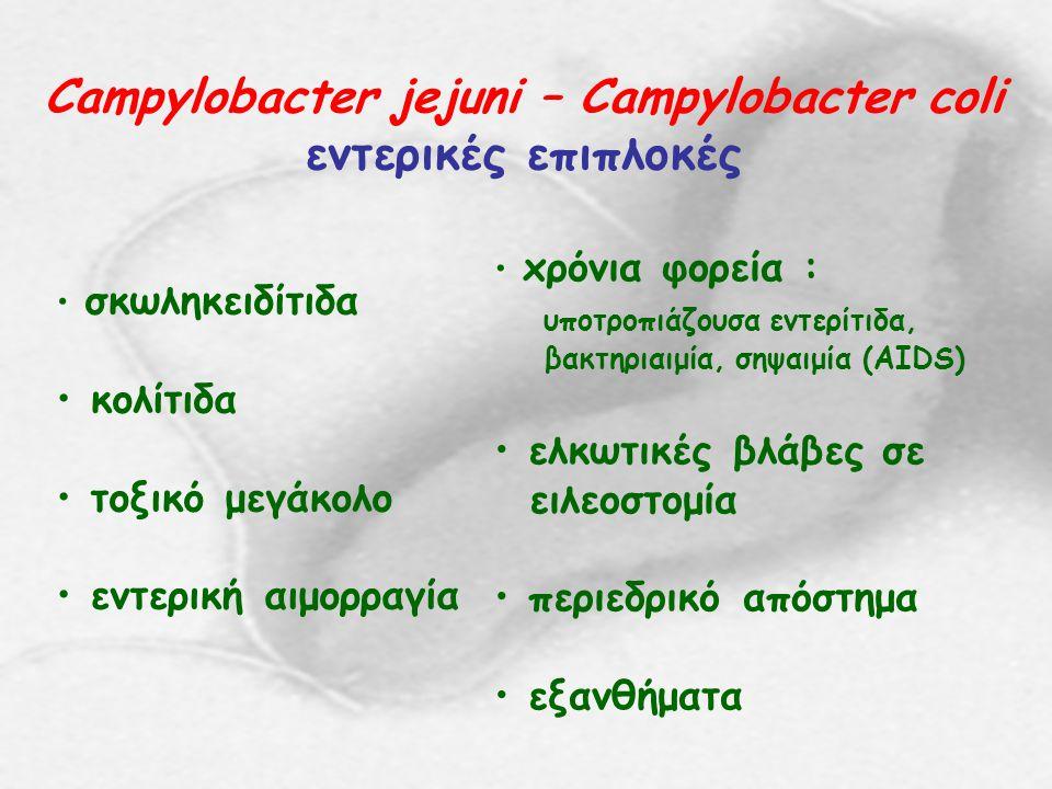 Campylobacter jejuni – Campylobacter coli εντερικές λοιμώξεις σε παιδιά διάρροια έμετοι αιμορραγικές κενώσεις (κολίτιδα) νεογνική λοίμωξη (διάρροια, μηνιγγίτιδα, αιμολυτική αναιμία)