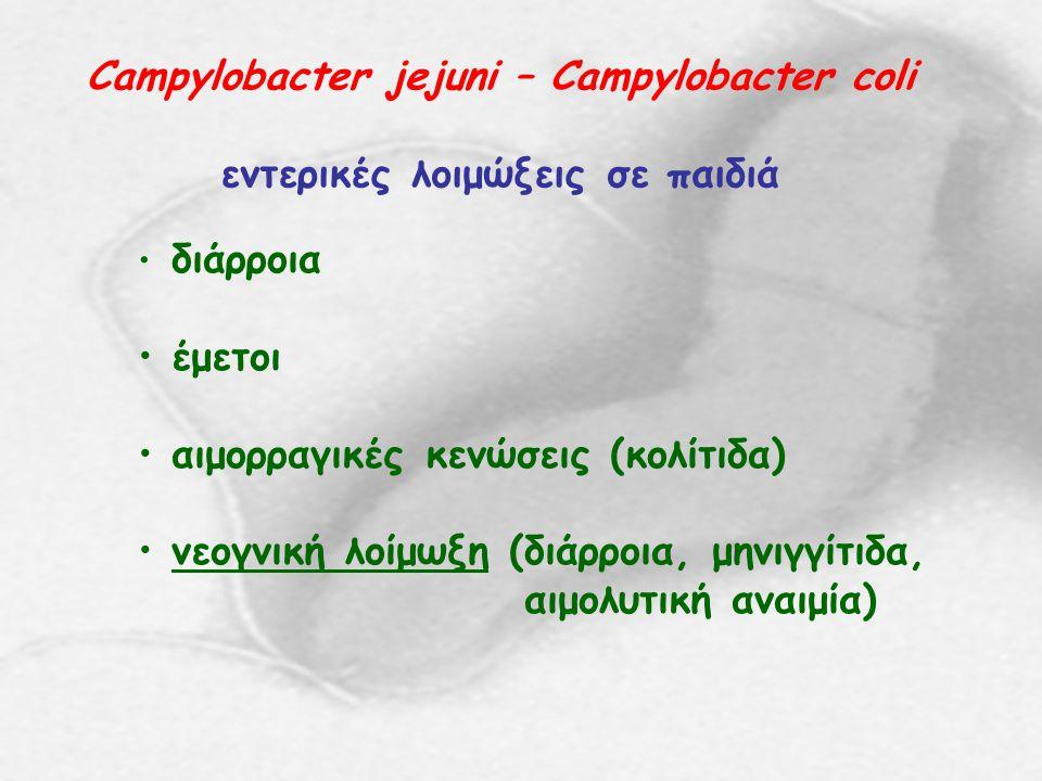 Campylobacter jejuni – Campylobacter coli εντερικές λοιμώξεις σε παιδιά διάρροια έμετοι αιμορραγικές κενώσεις (κολίτιδα) νεογνική λοίμωξη (διάρροια, μ
