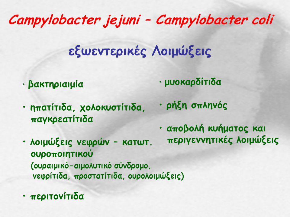 Campylobacter jejuni – Campylobacter coli εξωεντερικές Λοιμώξεις βακτηριαιμία ηπατίτιδα, χολοκυστίτιδα, παγκρεατίτιδα λοιμώξεις νεφρών – κατωτ. ουροπο
