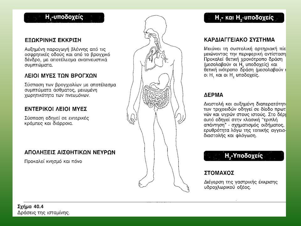 Ρόλος της ισταμίνης στην αλλεργία και την αναφυλαξία Υπάρχει ομοιότητα ανάμεσα στα συμπτώματα που προκύπτουν από την ενδοφλέβια χορήγηση ισταμίνης και εκείνα που συνδέονται με την αναφυλακτική καταπληξία και τις αλλεργικές αντιδράσεις (αύξηση της διαπερατότητας των τριχοειδών, διέγερση των εκκρίσεων, σύσπαση των λείων μυϊκών ινών κ.α.) Ρόλος των τροποποιητών: Τα συμπτώματα που συνδέονται με την αλλεργία και το αναφυλακτικό shock προκύπτουν από την απελευθέρωση ορισμένων τροποποιητών (ισταμίνη, σεροτονίνη, λευκοτριένια, ηωσινόφιλο χημειοτακτικό παράγοντα της αναφυλαξίας) από τις θέσεις αποθήκευσής τους Σε μερικές περιπτώσεις οι τροποποιητές προκαλούν εντοπισμένη αλλεργική αντίδραση Κάτω από άλλες συνθήκες μπορούν να προκαλέσουν πλήρη αναφυλακτική αντίδραση Η διαφορά ανάμεσα σ αυτές τις δύο καταστάσεις προκύπτει από διαφορές στις θέσεις από τις οποίες οι μεσολαβητές απελευθερώνονται και από τους ρυθμούς απελευθέρωσής τους Για παράδειγμα, εάν η απελευθέρωση της ισταμίνης είναι αρκετά αργή ώστε να επιτρέπει την αδρανοποίησή της προτού εισέλθει στην κυκλοφορία του αίματος, προκύπτει τοπική αλλεργική αντίδραση.