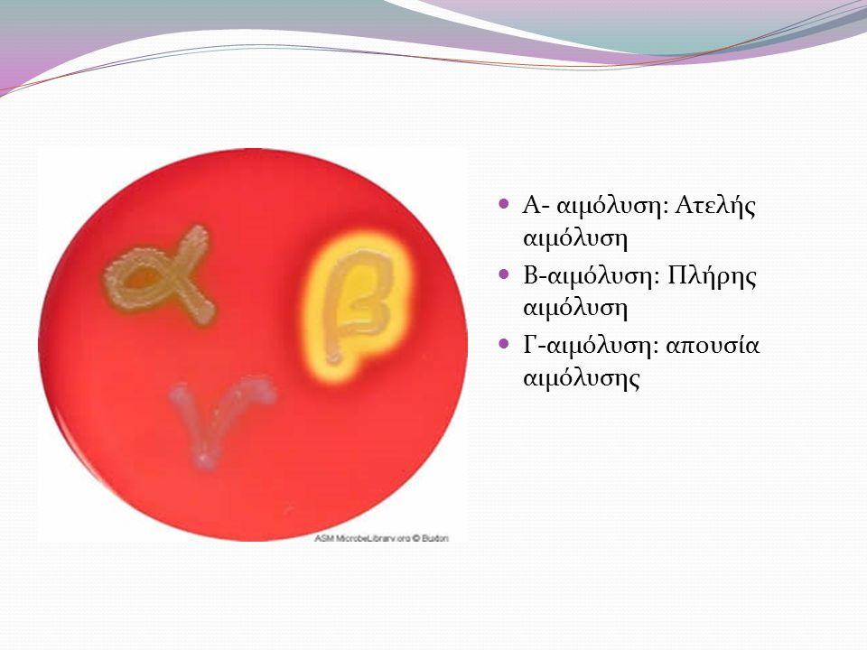 Α- αιμόλυση: Ατελής αιμόλυση Β-αιμόλυση: Πλήρης αιμόλυση Γ-αιμόλυση: απουσία αιμόλυσης