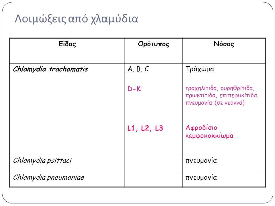 Λοιμώξεις από χλαμύδια ΕίδοςΟρότυποςΝόσος Chlamydia trachomatisΑ, Β, C D-K L1, L2, L3 Τράχωμα τραχηλίτιδα, ουρηθρίτιδα, πρωκτίτιδα, επιπεφυκίτιδα, πνε