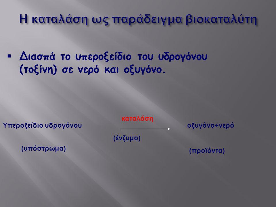  Διασπά το υπεροξείδιο του υδρογόνου (τοξίνη) σε νερό και οξυγόνο. Υπεροξείδιο υδρογόνου οξυγόνο+νερό (ένζυμο) καταλάση (υπόστρωμα) (προϊόντα)