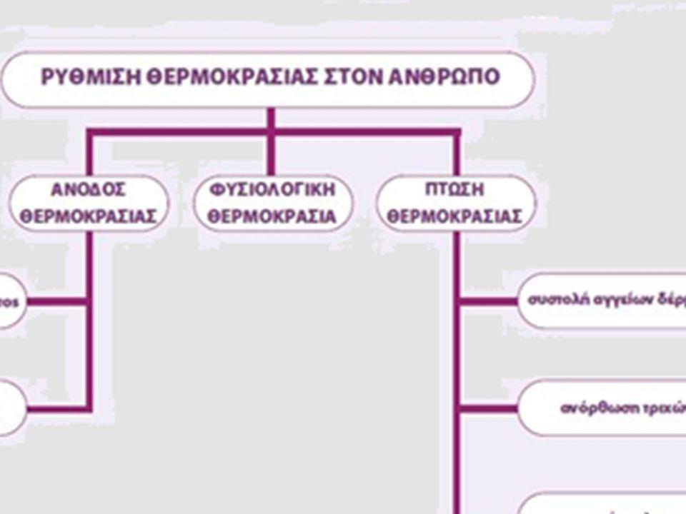 Σύνθεση Ενεργό κέντρο es Υπόστρωμα (μόρια τροφής) Σύνδεση ενζύμου- υποστρώματος Προιόντα (διατροφικά στοιχεία) Ένζυμο Ένζυμο= απελευθερώνεται για να επαναχρησιμοποιηθεί