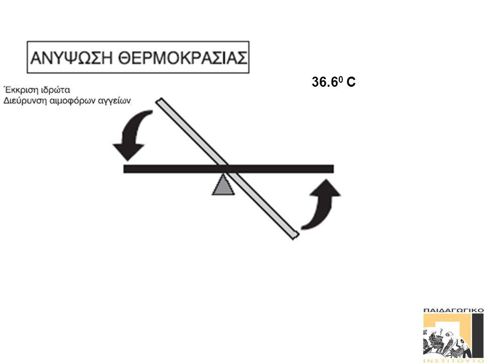 Κανονική θερμοκρασία (36,6 ο C) Κανονική θερμοκρασία (36,6 ο C) ΞΕΚΙΝΑ ΕΔΩ: ΕΡΕΘΙΣΜΑ = Αύξηση θερμοκρασίας σώματος Ο «θερμοστάτης» στον εγκέφαλο ενεργοποιεί μηχανισμούς ψύξης Οι ιδρωτοποιοί αδένες ενεργοποιούνται.