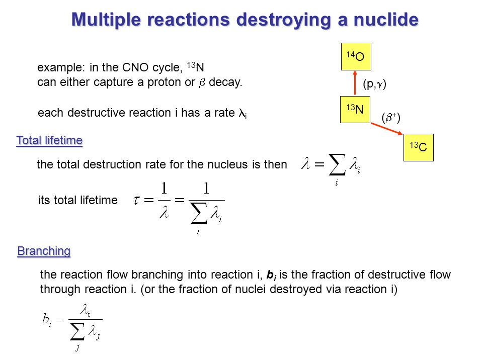 Multiple reactions destroying a nuclide example: in the CNO cycle, 13 N can either capture a proton or  decay. each destructive reaction i has a rate