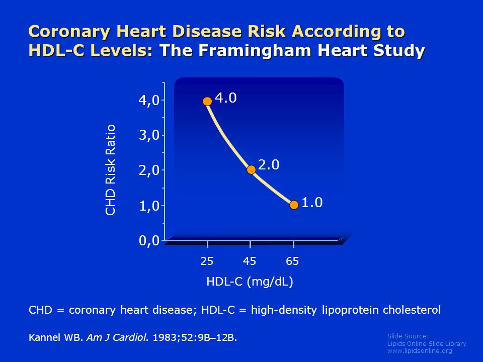 Slide Source: Lipids Online Slide Library www.lipidsonline.org Coronary Heart Disease Risk According to HDL-C Levels: The Framingham Heart Study Kanne