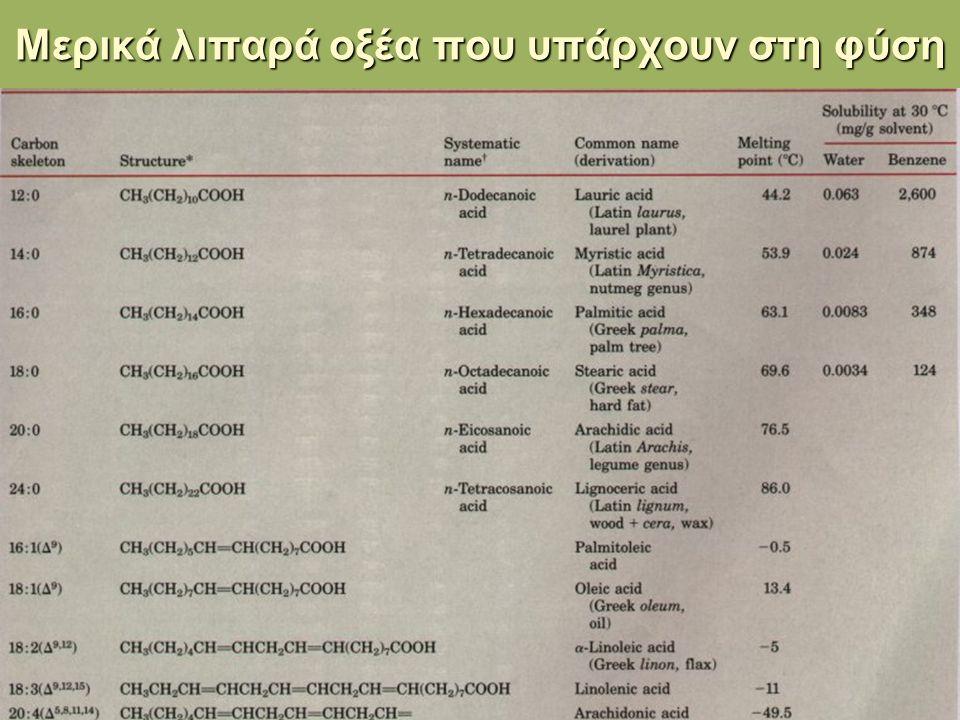 Μοριακή δομή ενός χυλομικρού Λιποπρωτεϊνικά συναθροίσματα Λιποπρωτεϊνικά συναθροίσματα Επιφανειακά: στοιβάδα φωσφολιπιδίων Επιφανειακά: στοιβάδα φωσφολιπιδίων Εσωτερικά: τριακυλογλυκερόλες και χοληστερόλη Εσωτερικά: τριακυλογλυκερόλες και χοληστερόλη Πρωτεΐνες του αίματος που προσδένουν λιπίδια, υπεύθυνες για μεταφορά λιπιδίων μεταξύ οργάνων