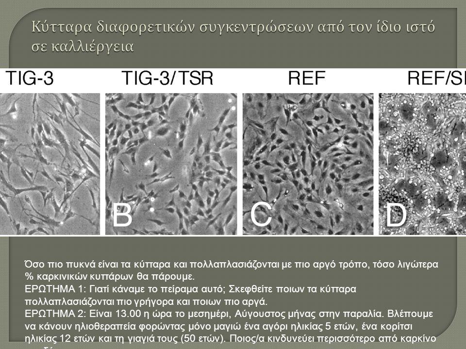 Όσο πιο πυκνά είναι τα κύτταρα και πολλαπλασιάζονται με πιο αργό τρόπο, τόσο λιγώτερα % καρκινικών κυττάρων θα πάρουμε.