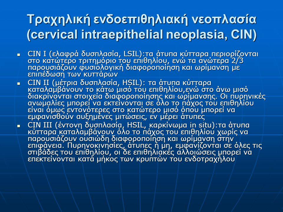 Τραχηλική ενδοεπιθηλιακή νεοπλασία (cervical intraepithelial neoplasia, CIN) CIN I (ελαφρά δυσπλασία, LSIL):τα άτυπα κύτταρα περιορίζονται στο κατώτερ