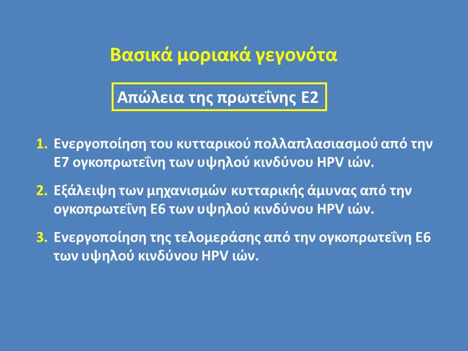 Βασικά μοριακά γεγονότα 1.Ενεργοποίηση του κυτταρικού πολλαπλασιασμού από την Ε7 ογκοπρωτεΐνη των υψηλού κινδύνου HPV ιών. 2.Εξάλειψη των μηχανισμών κ