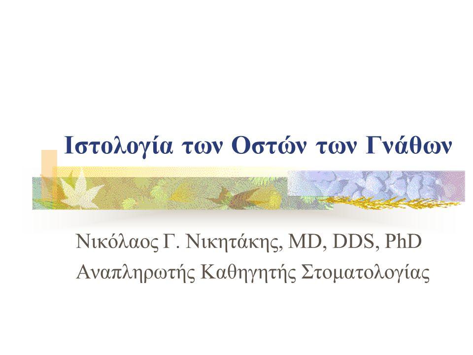 Ιστολογία των Οστών των Γνάθων Νικόλαος Γ. Νικητάκης, MD, DDS, PhD Αναπληρωτής Καθηγητής Στοματολογίας