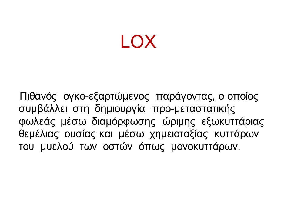 LOX Πιθανός ογκο-εξαρτώμενος παράγοντας, ο οποίος συμβάλλει στη δημιουργία προ-μεταστατικής φωλεάς μέσω διαμόρφωσης ώριμης εξωκυττάριας θεμέλιας ουσία