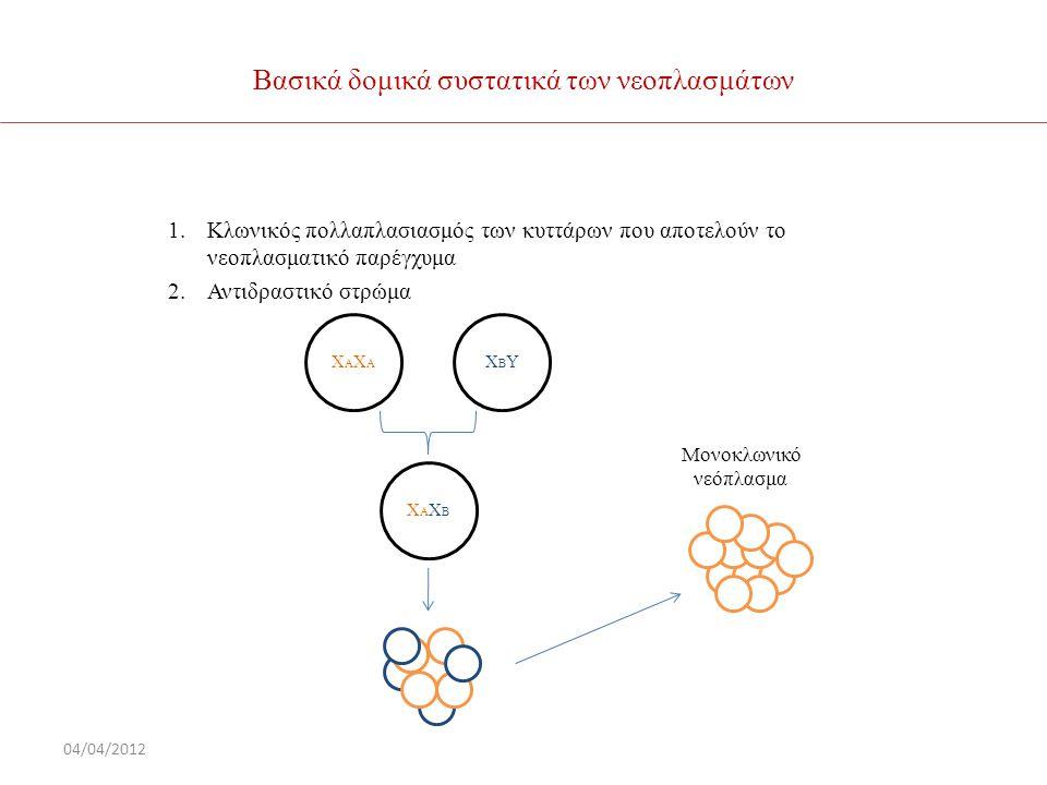 Βασικά δομικά συστατικά των νεοπλασμάτων 1.Κλωνικός πολλαπλασιασμός των κυττάρων που αποτελούν το νεοπλασματικό παρέγχυμα 2.Αντιδραστικό στρώμα 04/04/